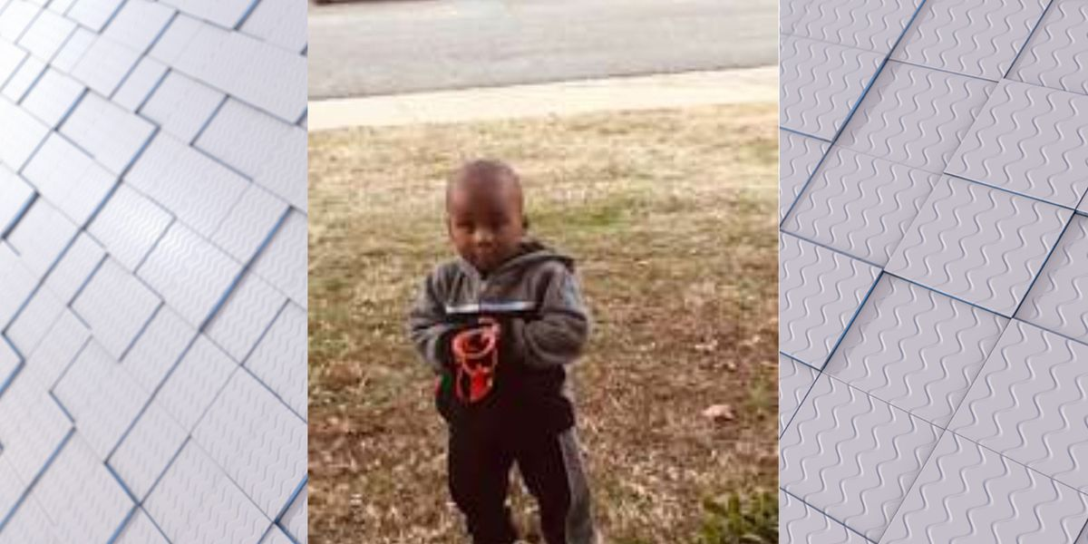 UPDATE: Grandmother arrested hours after Parrish police locate missing toddler