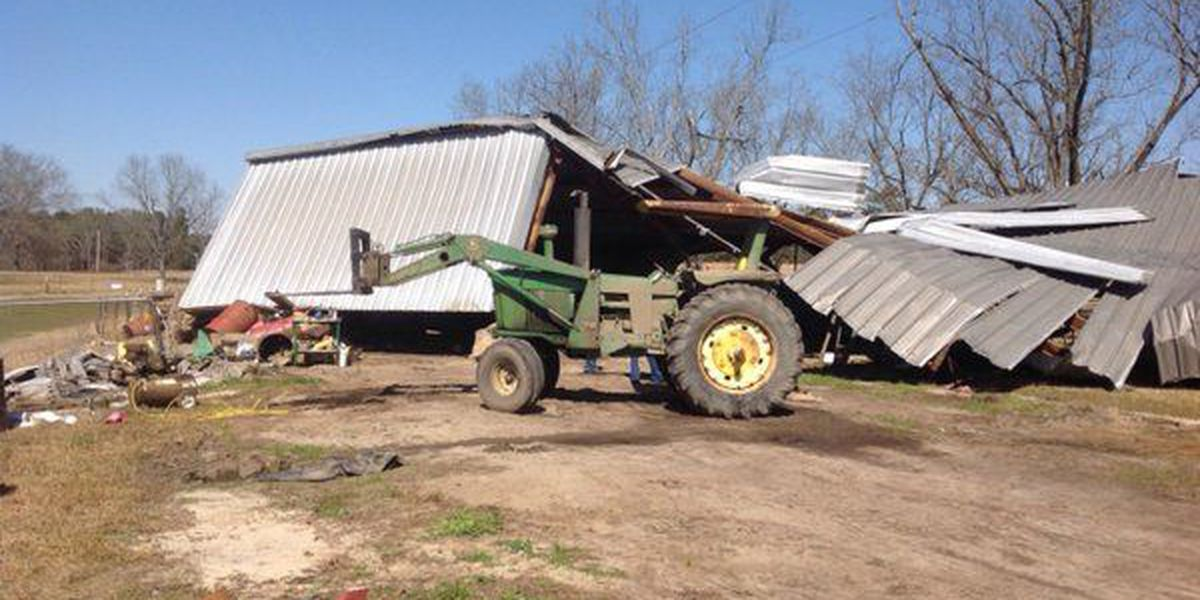 NWS confirms 2 tornadoes on Feb. 15 in Russell, Lee counties