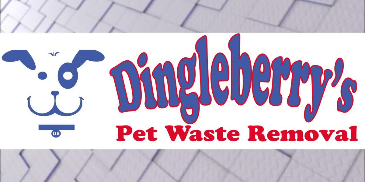 BUSINESS BREAK - DINGLEBERRY'S PET WASTE REMOVAL