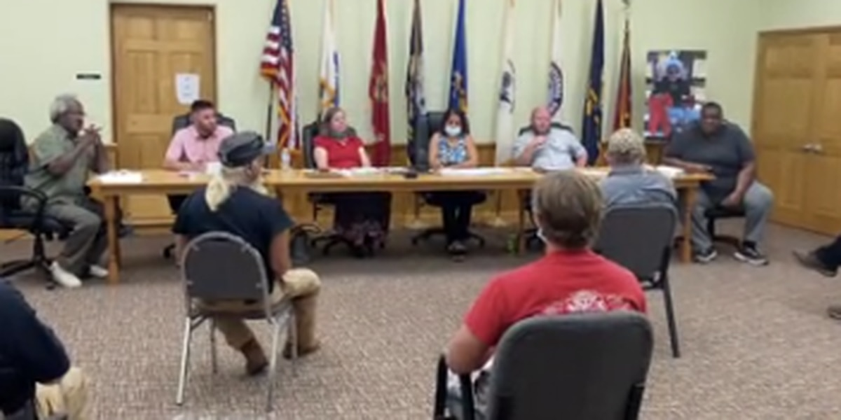Hamilton City Council hears input from citizens on removing Confederate monument