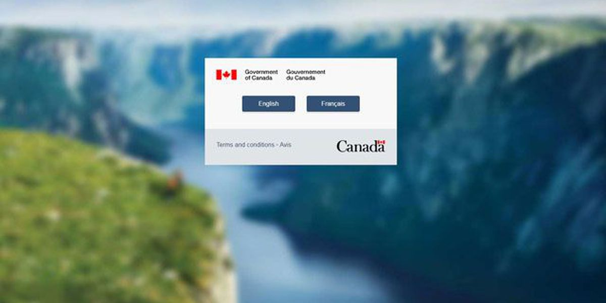 Canadian immigration website crashes during US presidential election