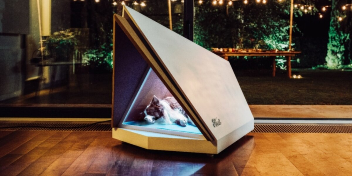 Ford developing noise-cancelling kennels for dogs