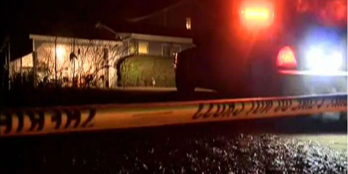 LaGrange apparent murder-suicide victims identified