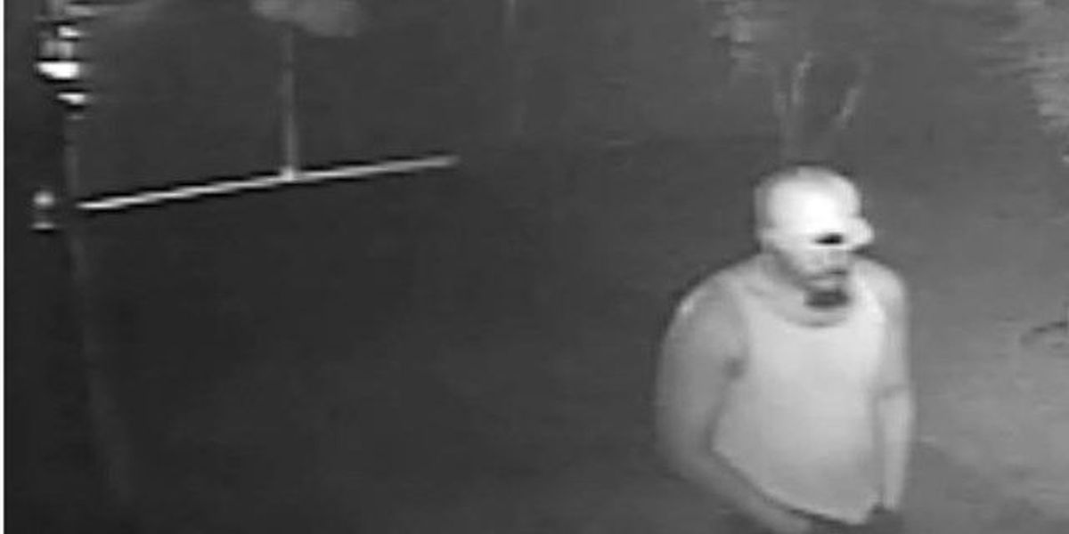 PICTURES: CPD looking for suspects in Monmouth Dr. home burglary